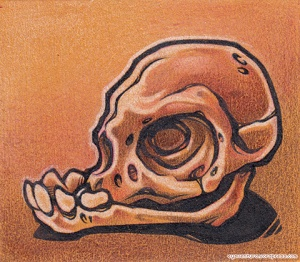 Bonehead 0024 INK+PENCIL